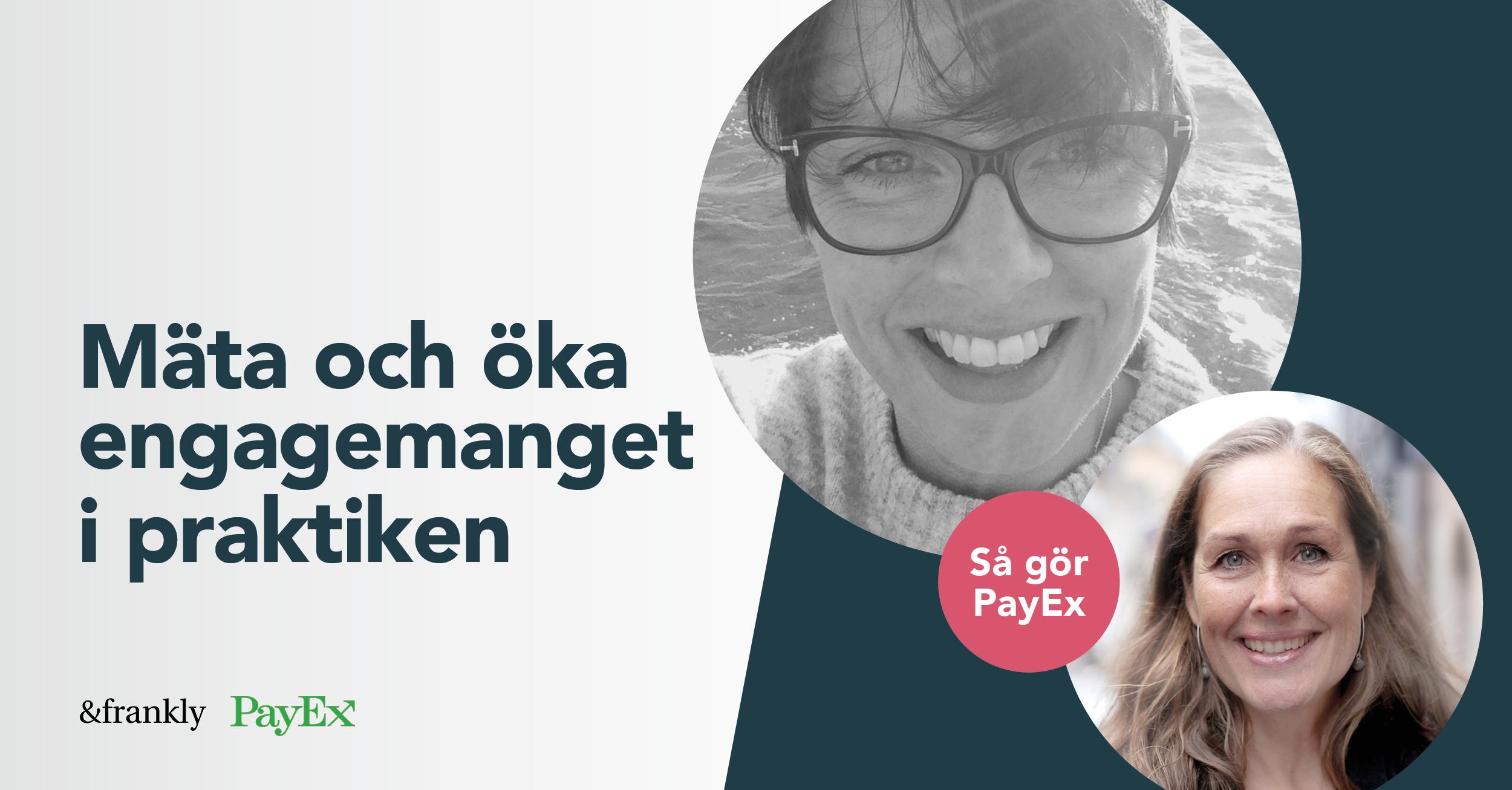 mejl image payex
